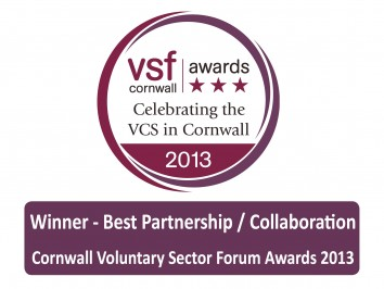 Cornwall Voluntary Sector Forum Award, 2013
